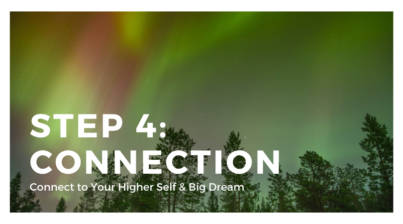 Step 4: Connection