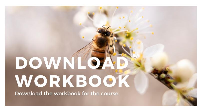 Download Workbook