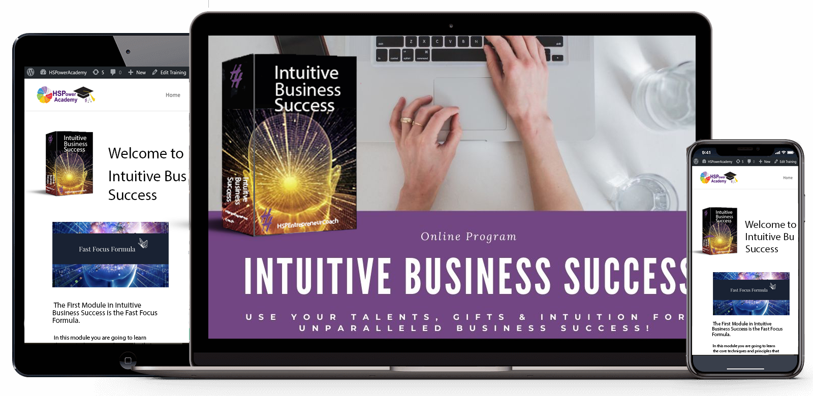 Intuitive Business Success System